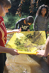 Orange County High students study a creek near the school